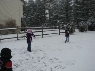 Snow ball fight